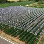 三重県でのソーラーシェアリング施工承ります。